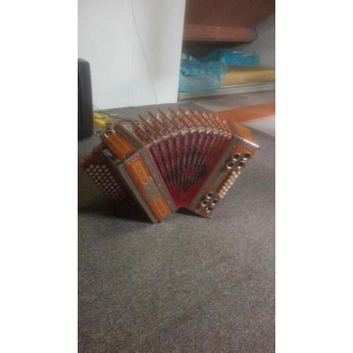 Te koop accordeon adgc